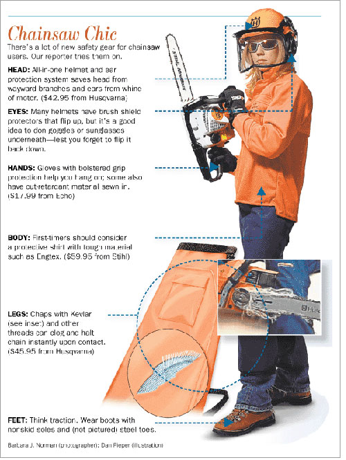 Chainsaw Safety Infographic